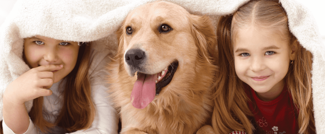 What Pets Teach Children (and Adults)